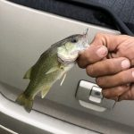 大江川でバス釣り!台風前日?釣れるのか?2019年9月